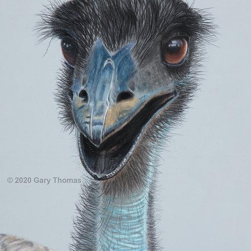 Happy Emu (original pastel)