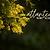 Atlantean Name Reading - 45 min