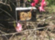 For Bees Retro Retreats | Bee Hotel