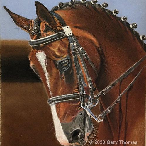 Beautiful Horse Pastel Painting