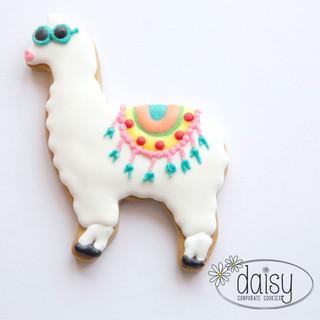 Daisy-Corporate-Cookie-Llama.jpg