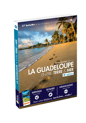 3D_ETM_GUADELOUPE.png