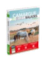 3D_BB_CAMARGUE_2019-copie.png