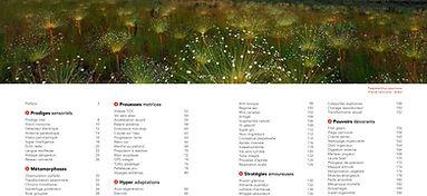 image-PDF_extraits_SPouvoirs-1.jpg
