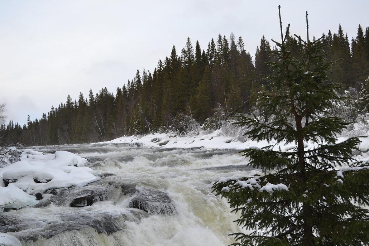Schwedisch Foto von Tännforsen, Region Norrland.