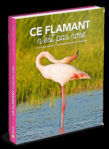 Flamant_3D_RVB_72Dpi.png