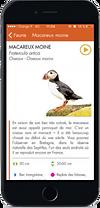 iPhone Oiseaux.png