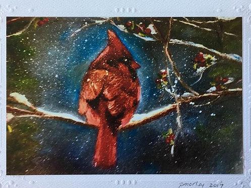 """A Cardinal's Perch"""
