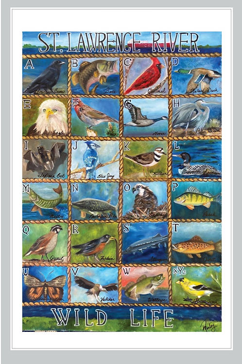 St. Lawrence River Wildlife Poster