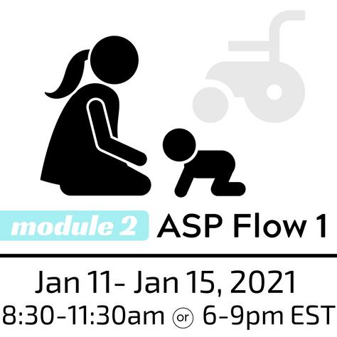 ASP Flow 1 Workshop, January 11-18, 2021