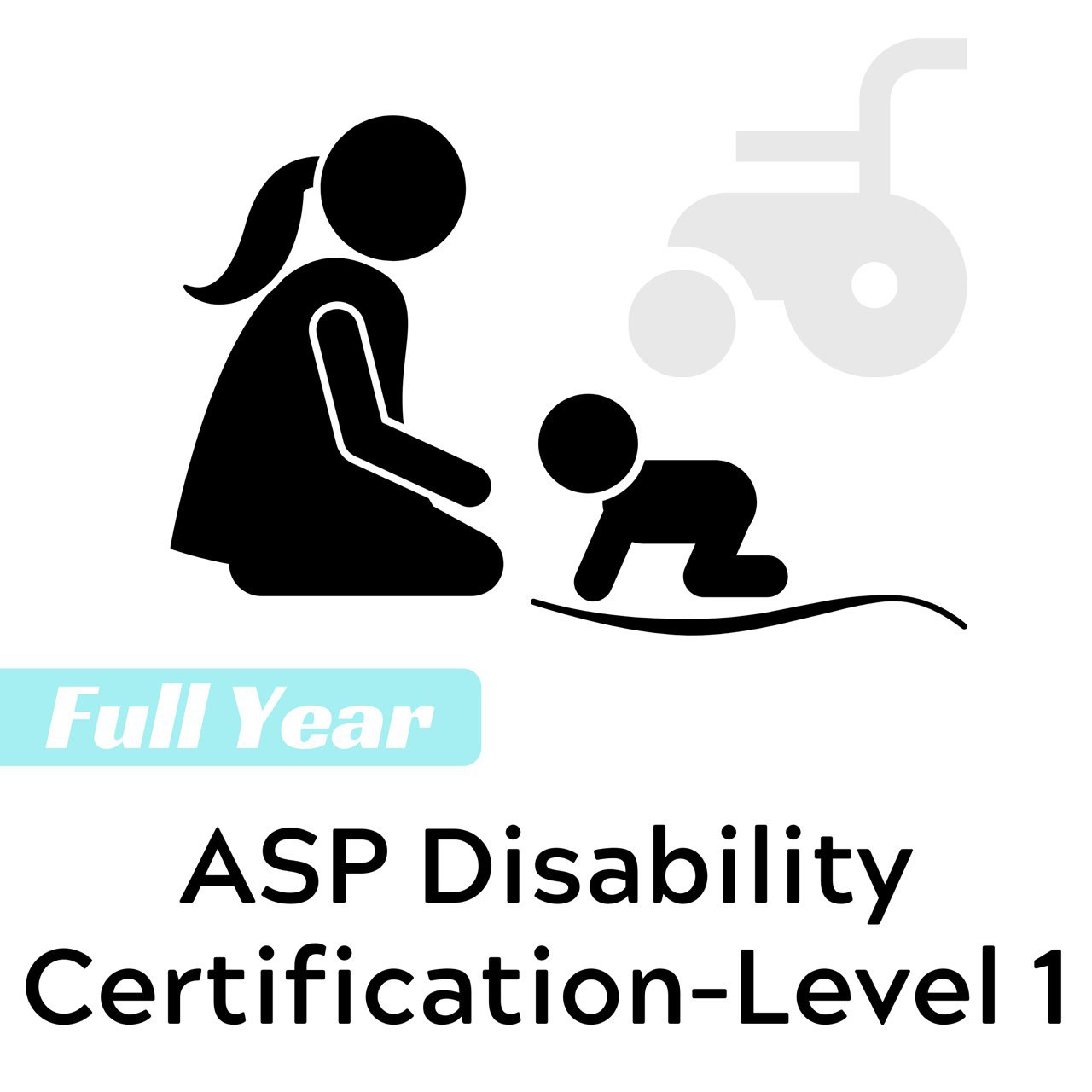ASP Disabilities Certification Course — Full Year (Level 1)