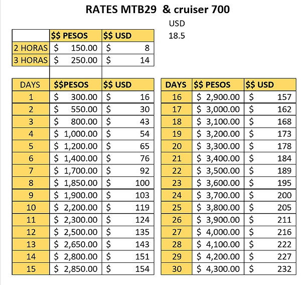 new RATES 2019 mtb29 and 700.jpg