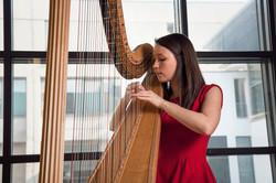 Elinor Nicholson Harp - Polaris Duo