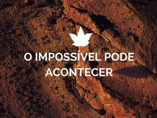 23 de Fevereiro - O impossível pode acontecer
