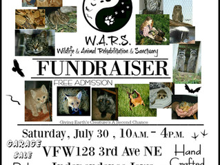 We are having our first fundraiser