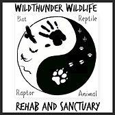 Wildthunder W.A.R.S.