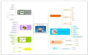 Rozvetvovanie-myšlienkovej-mapy