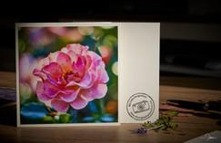 """Grußkarte """"Rose"""" mit Bokeh"""