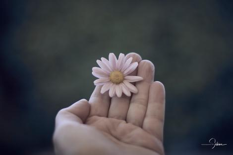 In meiner Hand.......