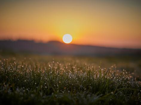 Das erste Sonnenlicht......