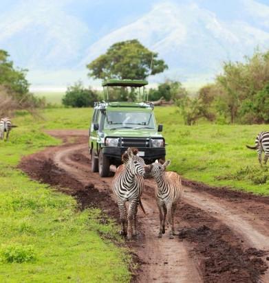 Serengeti National Park.jpg