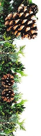 Pine cone Corner 1_edited.jpg