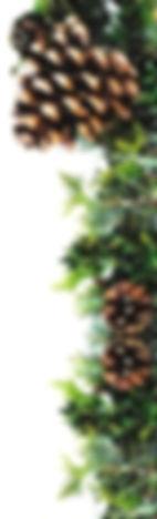 Pine cone Corner 1_edited_edited.jpg