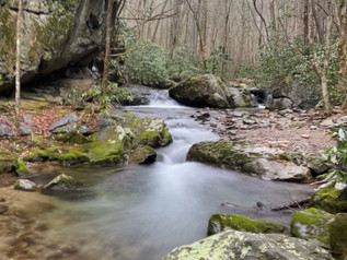 Water and the Word: Creeksong