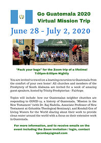 2020 Virtual Mission Trip Flyer_June 202