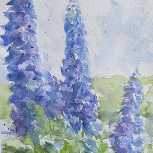 """""""Delphiniums"""", Watercolour 210 x 297 mm"""