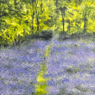 """""""Blue Bell Wood"""", Acrylic on Canvas, 600 x 600 mm"""
