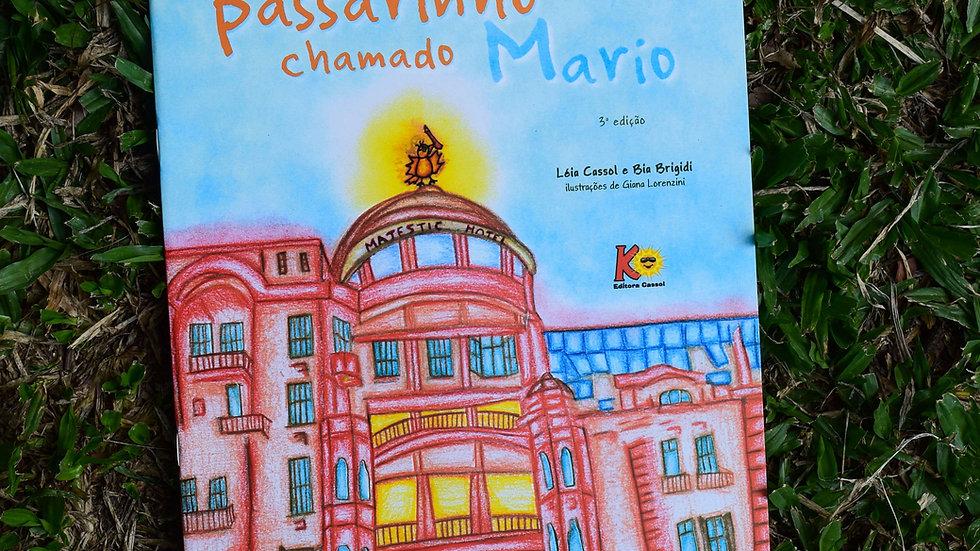 capa do livro um passarinho chamado mario leia cassol e bia brigidi