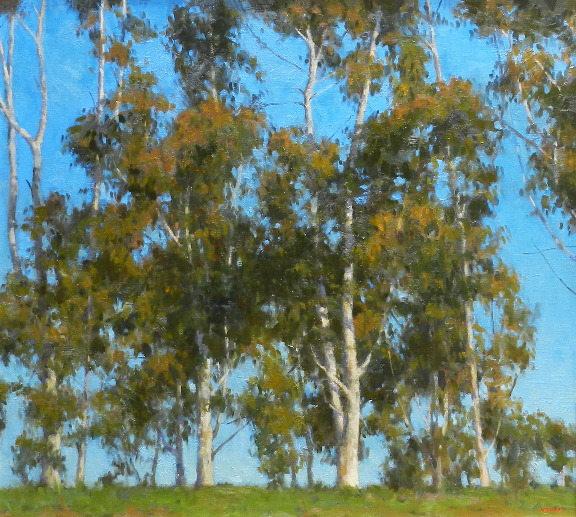 Majestic Eucalyptus 36x40
