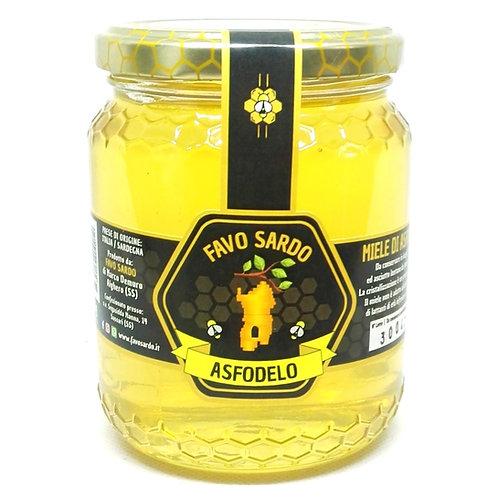 Miele di asfodelo