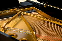 Goren Pianos