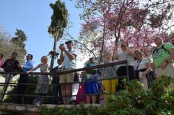Publikum i Gravhaven