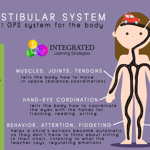What is the Vestibular System