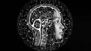 יותר מבינה מלאכותית - בינה שיתופית