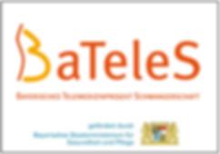 Bateles Projekt.png