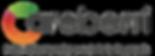 Careberri-Pulswellenanalyse_Logo.png