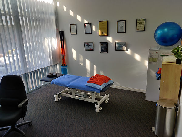 online physio video consults functional physio sa west torrens torrensville adelaide