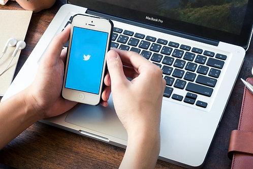 Twitter Speed