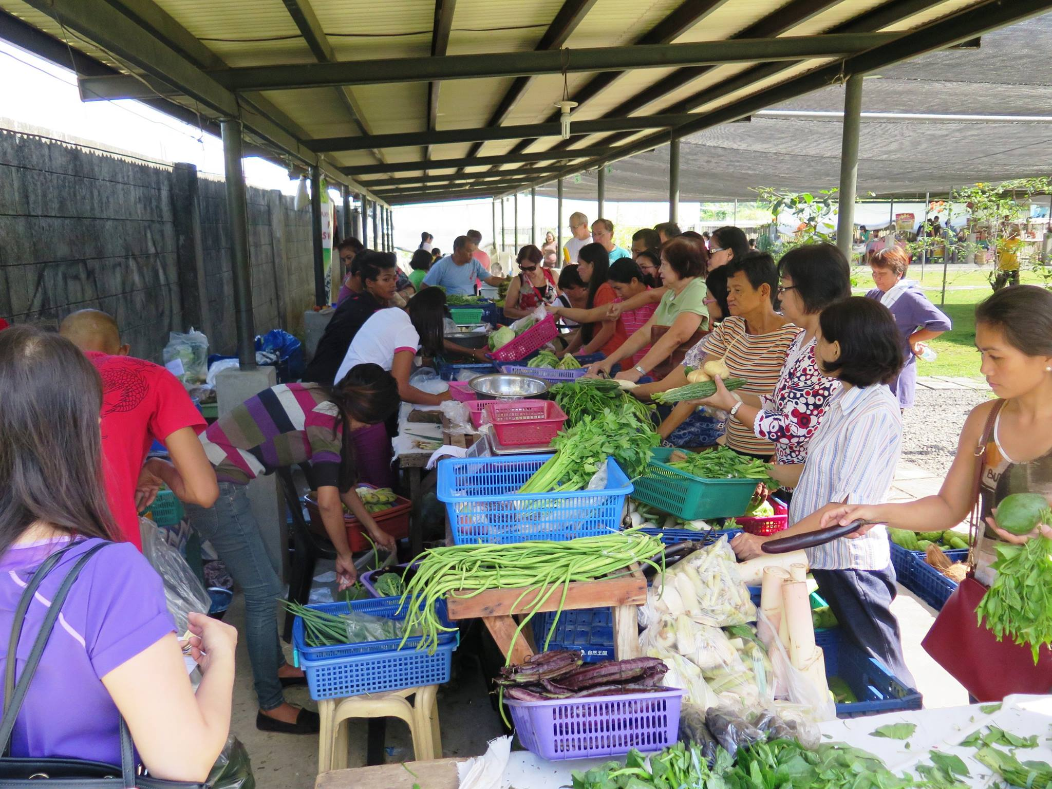 Negros Farmers Market.jpg