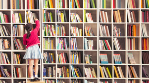 The Best Books, Handpicked by Your Local Librarians