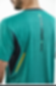 LasaiShirtBackAngle.png