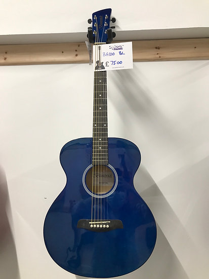 BF100 BC acoustic guitar