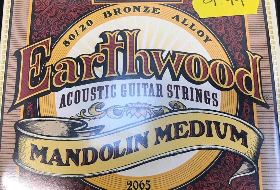 Mandolin medium strings