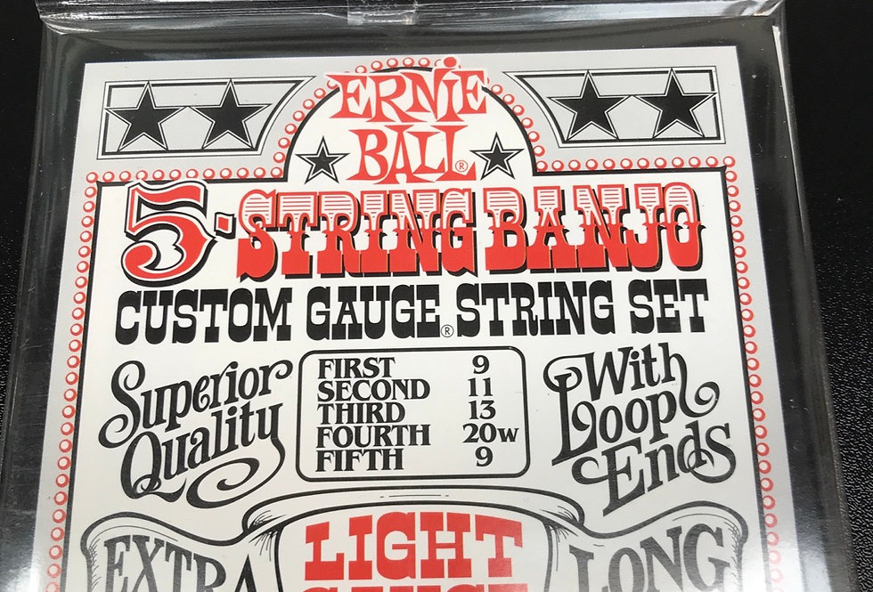 Ernie Ball 5 string set