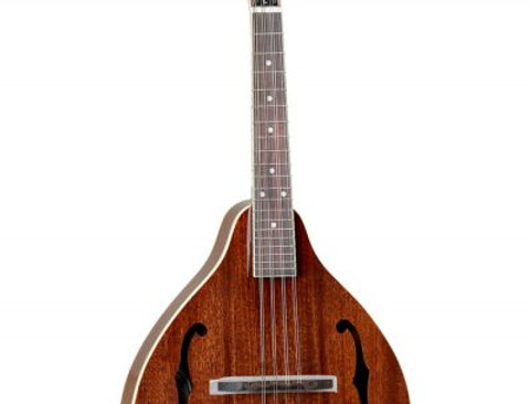 Tanglewood TWM T MH STE