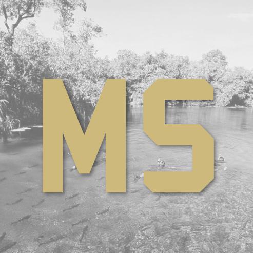 MS1_edited